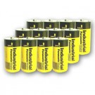 Panasonic Industrial D Alkaline Battery AM-1PI/C Replaces LR20 - 12pk